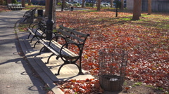 Autumn leaves blanket a lonely park in New York City with park benches all - stock footage