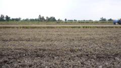 Tractor plowing dry paddy field Stock Footage