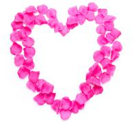 Composition of a heart with pink petals - stock photo