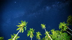 4K TimeLapse - The starry sky above the palm trees in the tropics Stock Footage