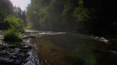 Flowing water in Silver Falls State Park Stock Footage