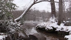 Snowy Creek - Tree overhang - Loopable Stock Footage