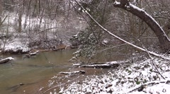 Peaceful Flowing Winter Stream Stock Footage
