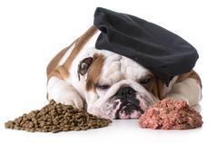 Dog food debate - kibble or raw Stock Photos