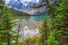 Edith Cavell Lake in Canadian Rockies Stock Photos