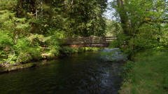 View of bridge over river in Silver Falls State Park Stock Footage