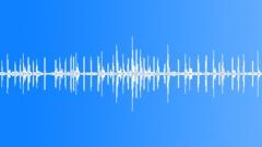 Sparrow Sounds - sound effect