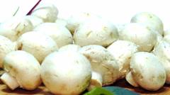 Stock Video Footage of champignons mushrooms