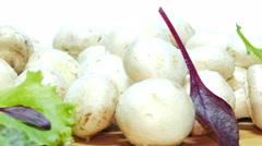 Champignons mushrooms Stock Footage