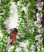Flowers and plants holiday sale concept background with shoes Stock Illustration
