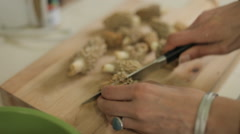 Morel Mushroom Cooking - Preparation Stock Footage
