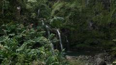 Waikani Falls, Road to Hana, Maui, Hawaii Stock Footage