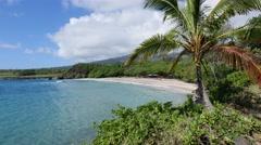 Hamoa Beach, Hana coast, Maui, Hawaii Stock Footage
