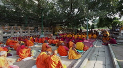 Buddhist Monks Under Bodhi Tree at Mahabodhi Temple, Bodhgaya, India Stock Footage