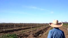 Farmer on Farmland, orchard Stock Footage
