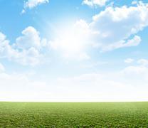 Plain Grass And Blue Sky Stock Illustration