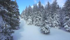 AERIAL: Following the footsteps in snow through winter forest Stock Footage
