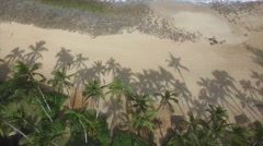 Palm Tree shadows on a white sandy beach Stock Footage