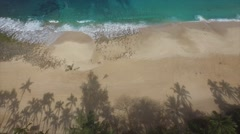 Shadows of palm trees on a secluded beach on the North Shore of Oahu, Hawaii Stock Footage