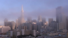 Famous Transamerica Pyramid San Francisco skyline foggy day landmark emblem USA  Stock Footage