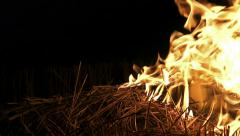 4K Fire burning forrest grass close up. UHD stock video Stock Footage