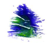 macro Green, dark blue spot blotch texture isolated on a white b - stock illustration