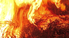 4K Large forest fire close up. UHD stock video Stock Footage
