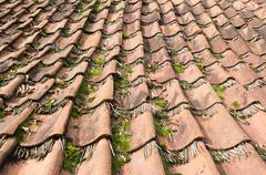 Tiles on a house in the Open Air Museum in Ootmarsum. - stock photo