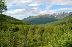 deep panoramic arctic summer mountain and wilderness landscape - stock photo