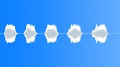 Sound effect hyena Sound Effect