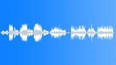 Sound effect jaguar Sound Effect