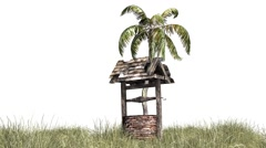 Palm in old well and grass in wind Stock Footage