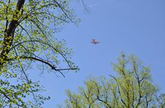 Trees and biplane Stock Photos