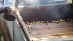 Blowing smoke the bees in the hive Stock Footage