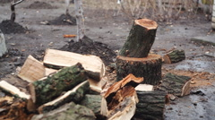 man chopping wood in the yard - stock footage