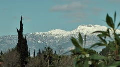 Spain Mallorca Island various 003 snow covered mountains behind plants Stock Footage