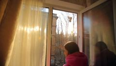 Woman at the Window Watching the Birds Stock Footage