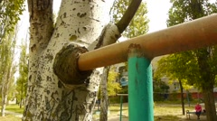 tree eats metal, urbanization, metal tree kills, leaky pipe tree destruction of - stock footage