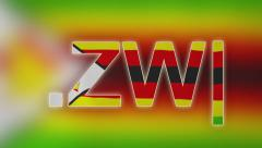 ZW - Internet Domain of Zimbabwe Stock Footage