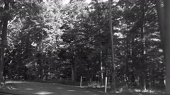 Driving through a forest. Black and white footage Stock Footage