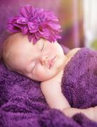 Cute newborn girl sleeping Stock Photos