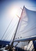Sail of the Yacht - stock photo