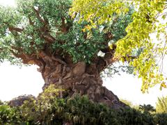The Tree of Life in the Animal Kingdom Park, Disney World, Florida Stock Photos