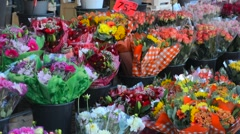 Stockholm Sweden colorful flowers for sale at market in downtown city Stock Footage
