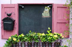 Yellow flower in plant pots growing on pink windows and blackboa - stock photo