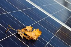 Solarmodule im Herbst - stock photo