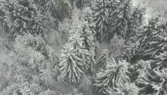 Stock Video Footage of AERIAL: Beautiful snowy forest in winter