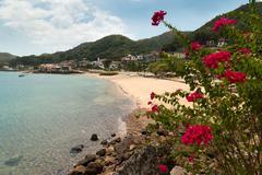 View of beach and flowers of Isla Taboga Panama City Stock Photos