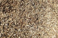 Sawdust detail - stock photo