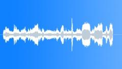 Sound effect cheetah 1 Sound Effect